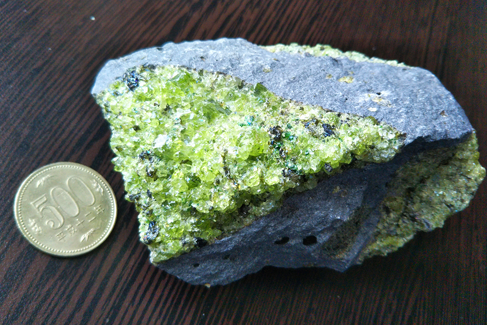 マントルからやってきた!かんらん岩(緑色の部分)