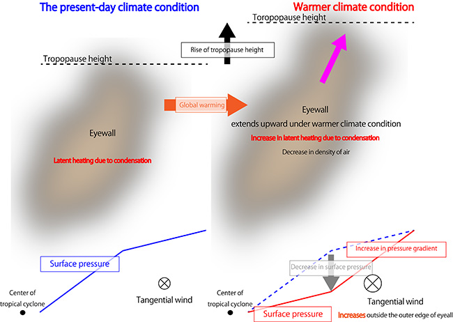 Press releases jamstec diagram showing mechanism of changes in distribution of wind velocity around tc with eyewall changes global warming causes an upward extension of tc ccuart Images