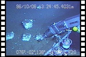 鳥島の鯨骨へ再来訪 第340潜航 ...